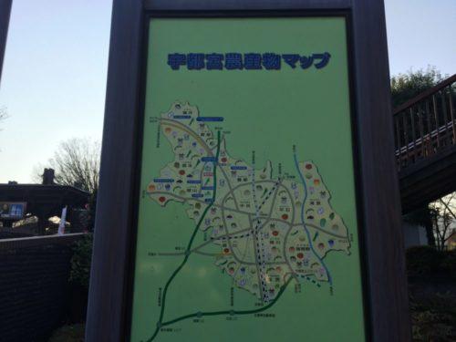 道の駅うつのみやろまんちっく村は栃木県最強クラスの車中泊スポット
