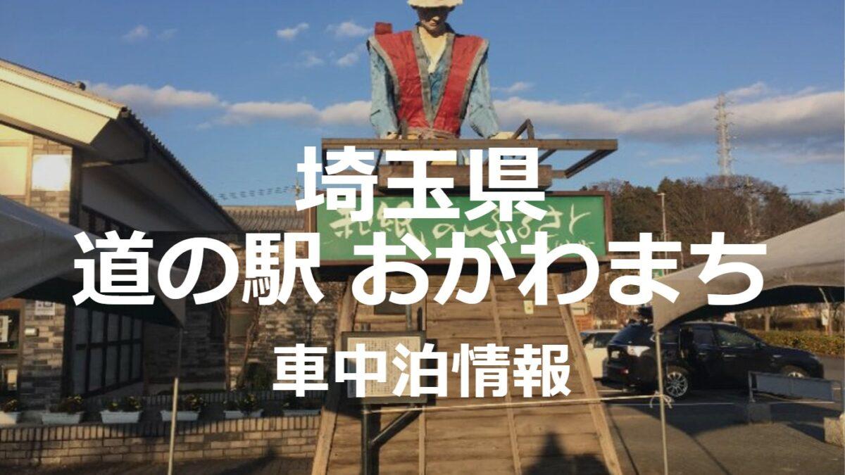 埼玉県道の駅おがわまちで車中泊は?