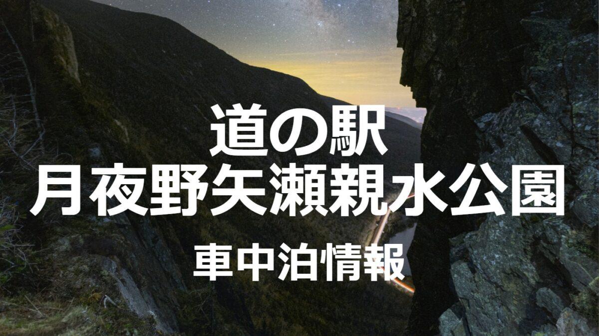 群馬県道の駅月夜野矢瀬親水公園の車中泊情報