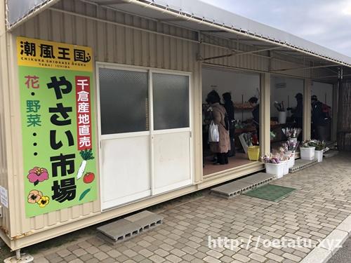 【千葉県】道の駅ちくら・潮風王国での車中泊は最適だった