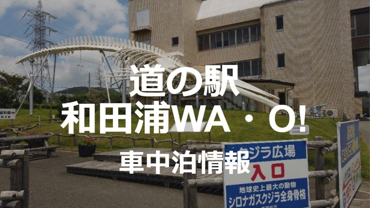 迫力満点のクジラ!?道の駅和田浦WA・O!の車中泊情報
