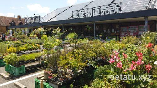 道の駅ローズマリー公園農産物直売所