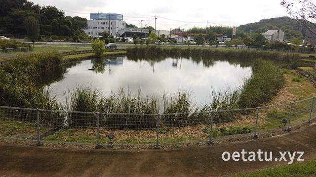 道の駅みかも池